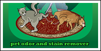 Pet Odor and Stain Remover Atlanta GA